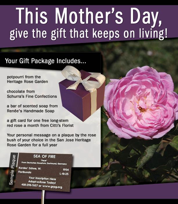 MothersDayWebGraphic2015