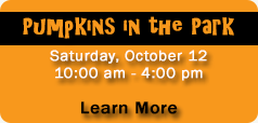 Click here to learn more about Pumpkins in the Park