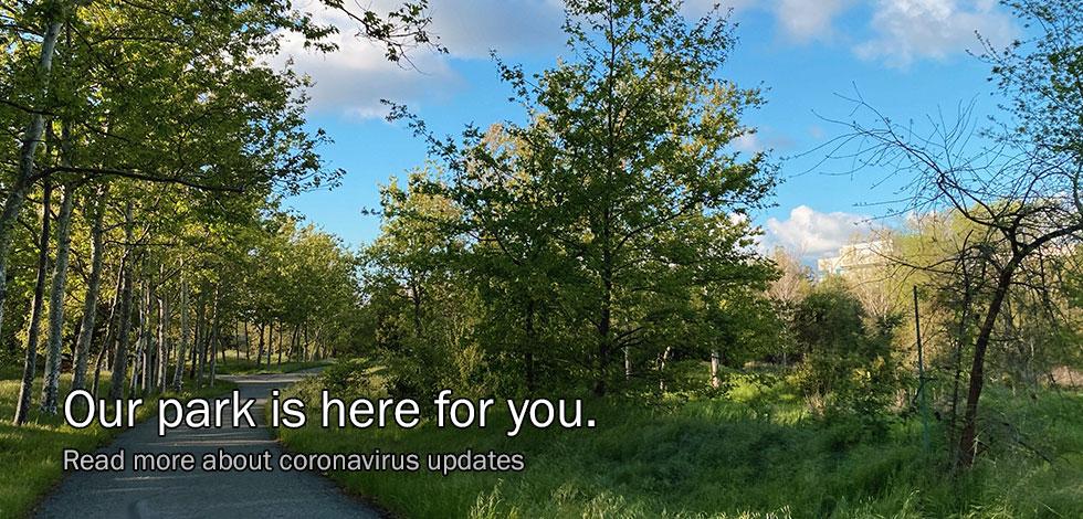 HomePageSlider_Coronavirus